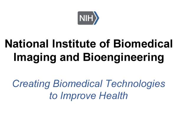 National Institute of Biomedical Imaging and Bioengineering Logo